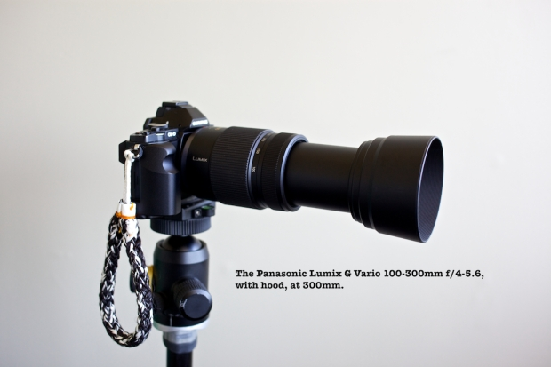 Set to 300mm
