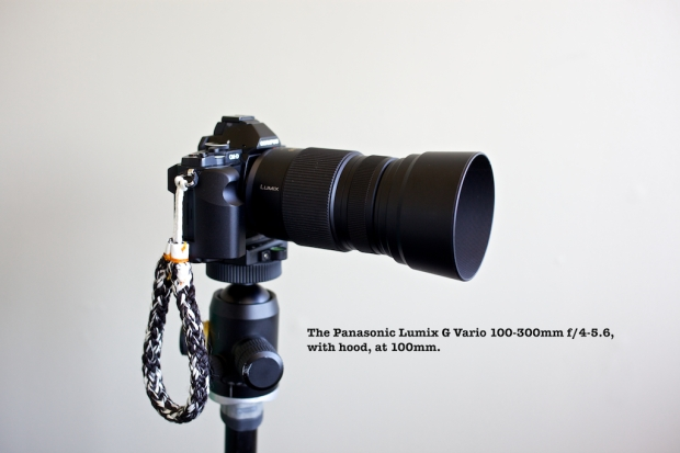 set to 100mm