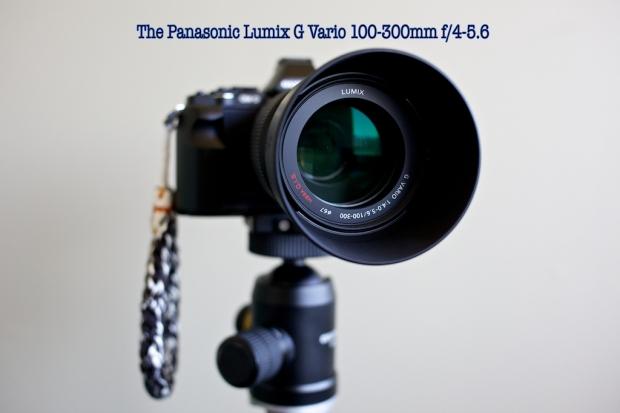 Lumix G Vario 100-300mm f/4-5.6