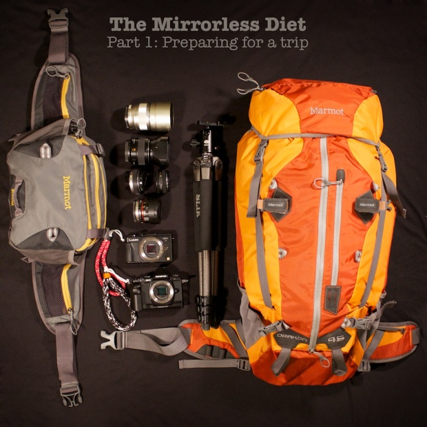 mirrorless diet