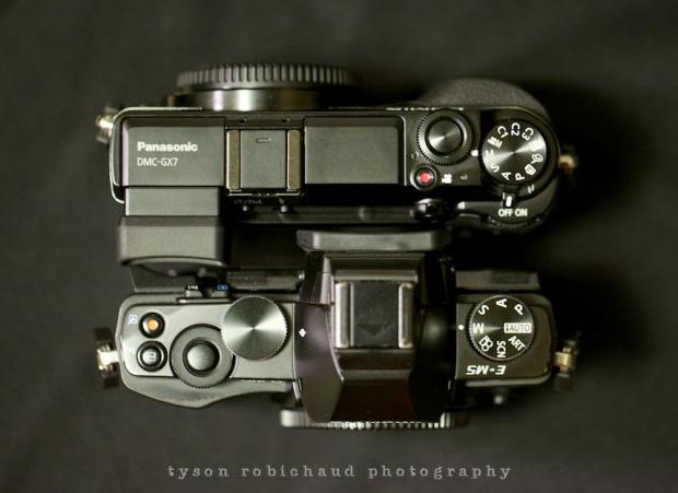GX7vsEM5 EVF