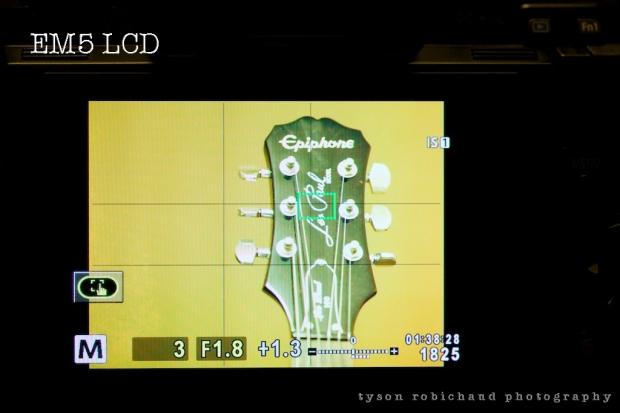 EM5 LCD