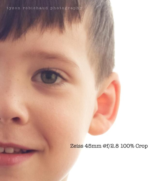 Zeiss 45 100% crop