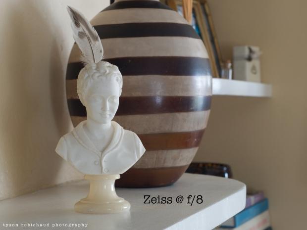 ZeissF8