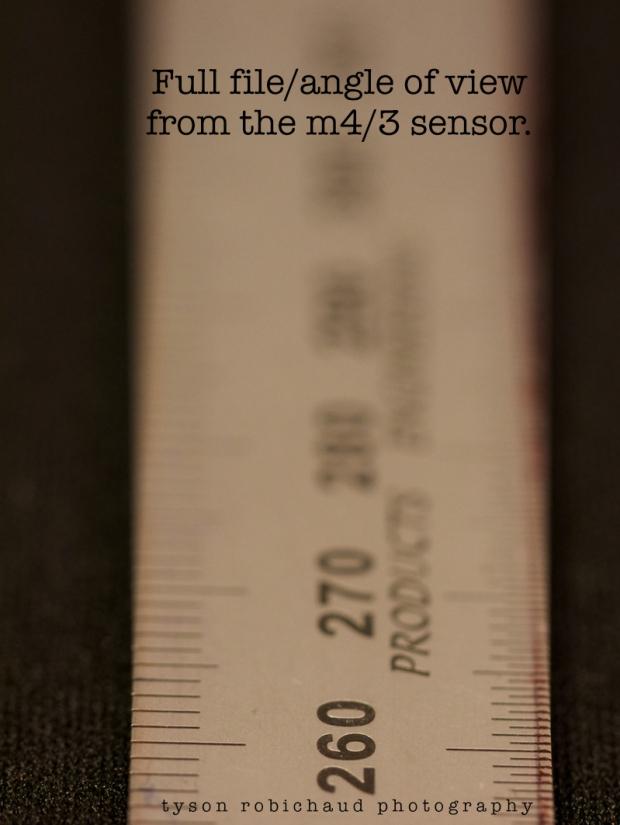 P1110343