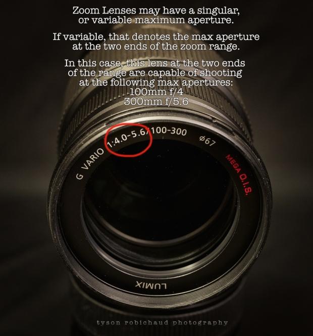 Panasonic 100-300mm zoom lens