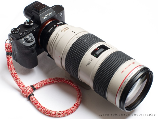 Canon EF 70-200mm f/2.8 L IS USM on Sony a7II