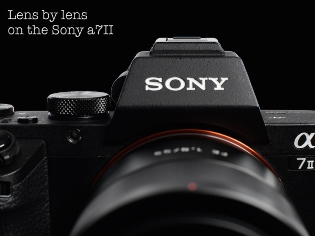 lens by lens on the sony a7ii