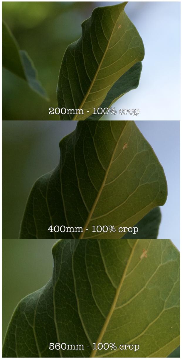 100%crops