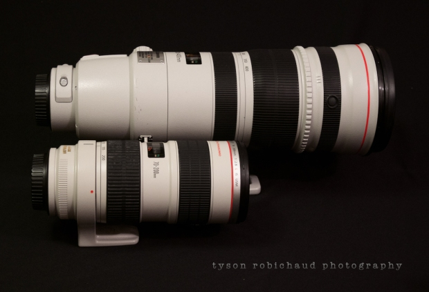 EF 70-200mm f/2.8 L IS USM vs 200-400mm f/4 L IS USM